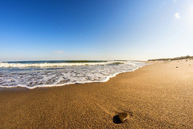 Ensam strand av ?stersj?n med kiselstenen royaltyfri bild
