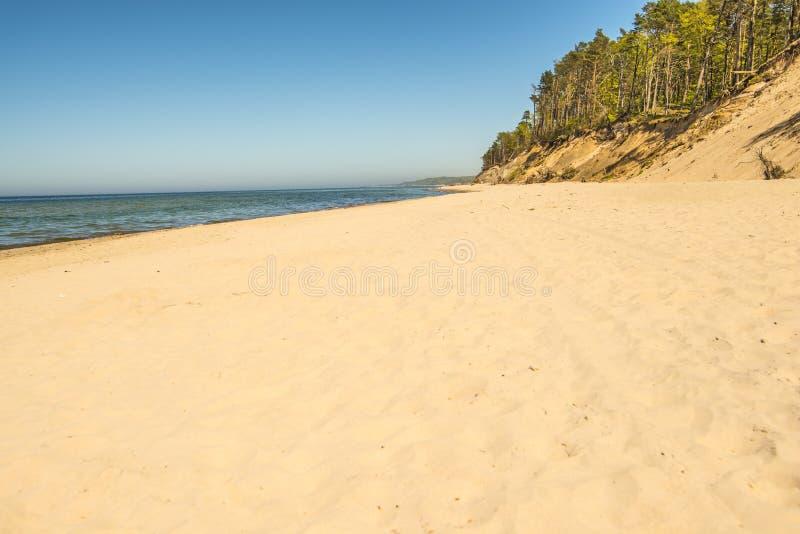 Ensam strand med en blå himmel arkivfoton