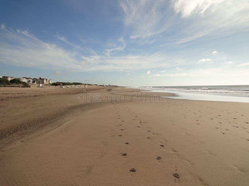 Ensam strand på morgonen fotografering för bildbyråer