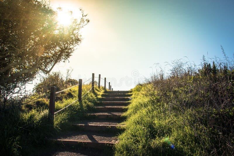 Ensam vandringsled som leder upp trappan i solnedgången royaltyfri fotografi