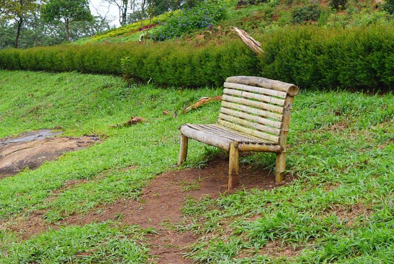 Ensamhet - avkoppling i natur - en tom träbänk Seat i trädgård arkivbild