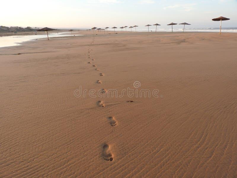 Ensamma fotspår på stranden arkivbilder