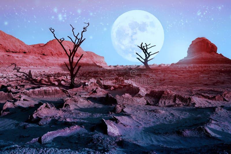Ensamma torra träd i öknen mot en härlig rosa himmel och en fullmåne Månsken i öknen Konstnärlig naturlig bild royaltyfria bilder