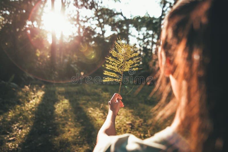 Ensamt flickaanseende i skogen och soluppgång i morgonen royaltyfria foton