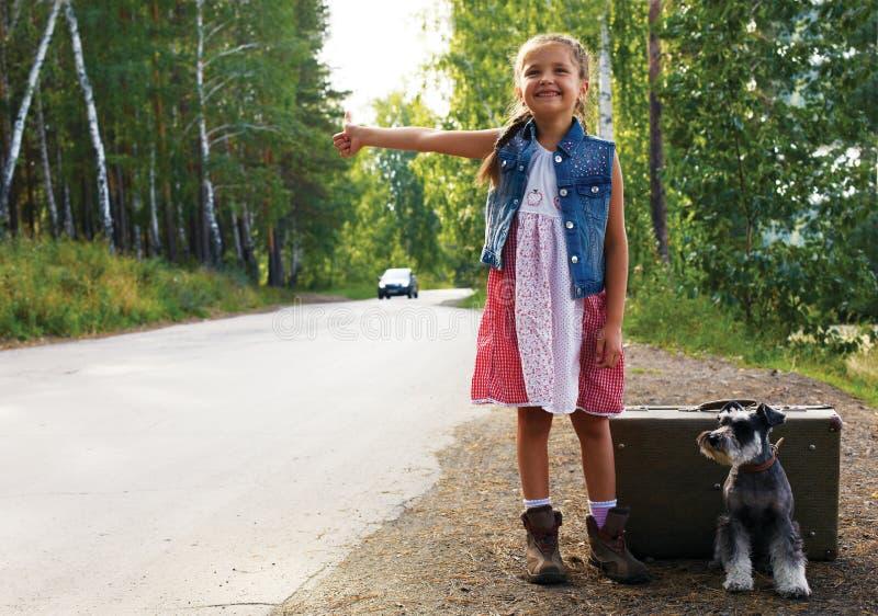 Ensamt flickaanseende på vägen med en resväska och en hund, rais royaltyfri bild