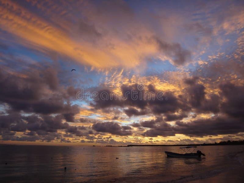 Ensamt hav i dominicana arkivbilder