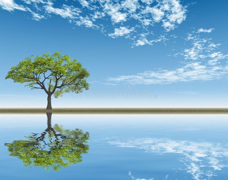 Ensamt träd reflekterat i vattnet vektor illustrationer