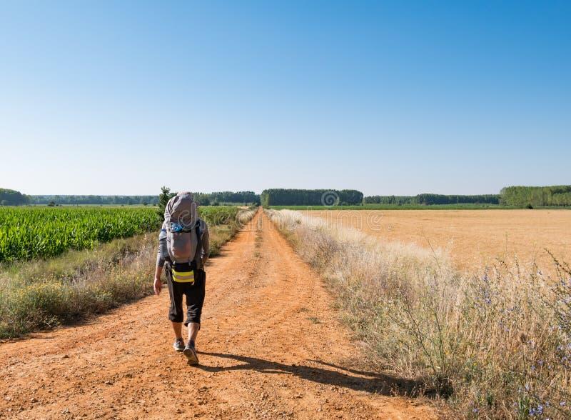 Ensamt vallfärda med ryggsäcken som går Caminoen de Santiago i Spanien, väg av St James fotografering för bildbyråer
