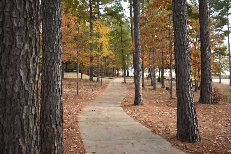 Ensayo que camina en un parque no nombrado en Gilmer Texas Nov 25 2018 imagenes de archivo