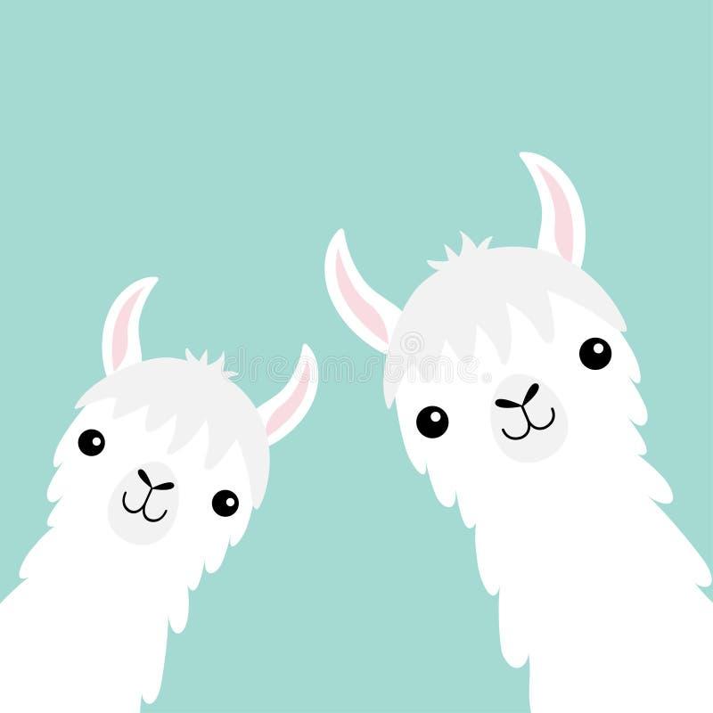 Ensemble animal d'alpaga de deux lamas Cou de visage Fourrure pelucheuse de cheveux Caractère drôle de kawaii de bande dessinée m illustration de vecteur