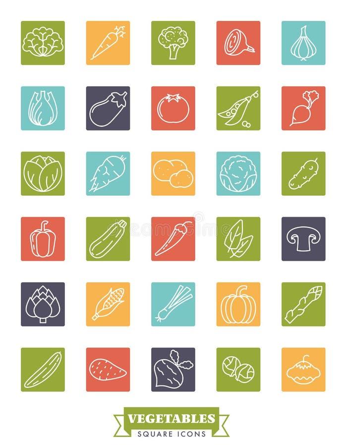 Ensemble carré de vecteur d'icône de légumes sains illustration stock