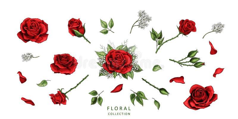 Ensemble coloré d'éléments tirés par la main d'illustration de roses rouges illustration libre de droits