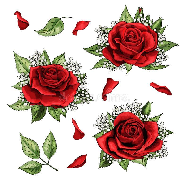 Ensemble coloré d'éléments tirés par la main d'illustration de roses rouges illustration stock