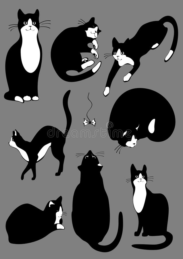 Ensemble complet de cats.jpg illustration stock