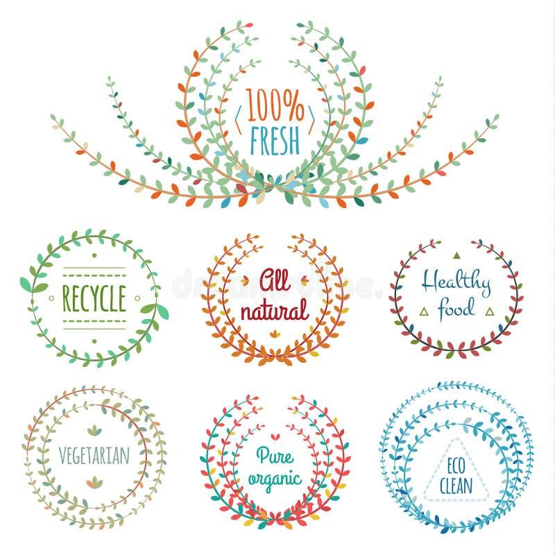 Ensemble d'éléments de conception florale illustration stock