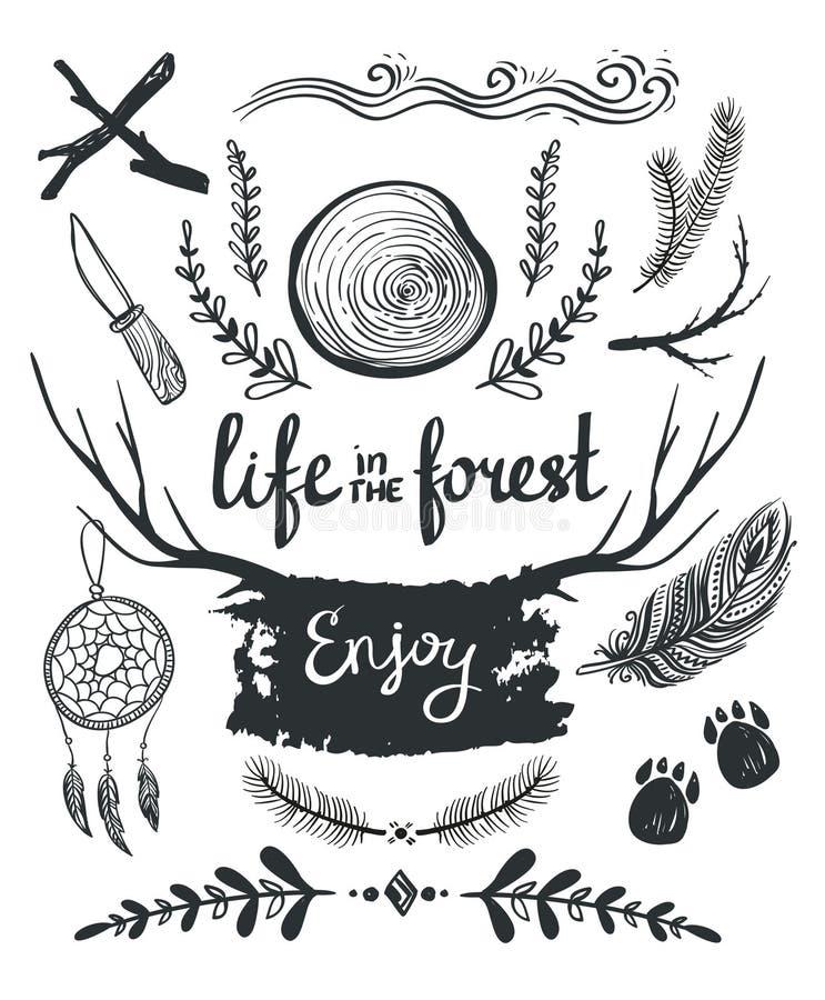 Ensemble d'éléments et de clipart (images graphiques) orientés autour de la vie dans la forêt illustration de vecteur