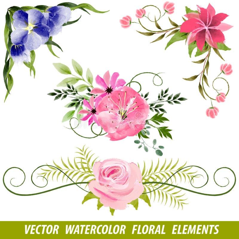 Ensemble d'éléments floraux d'aquarelle de vecteur illustration de vecteur