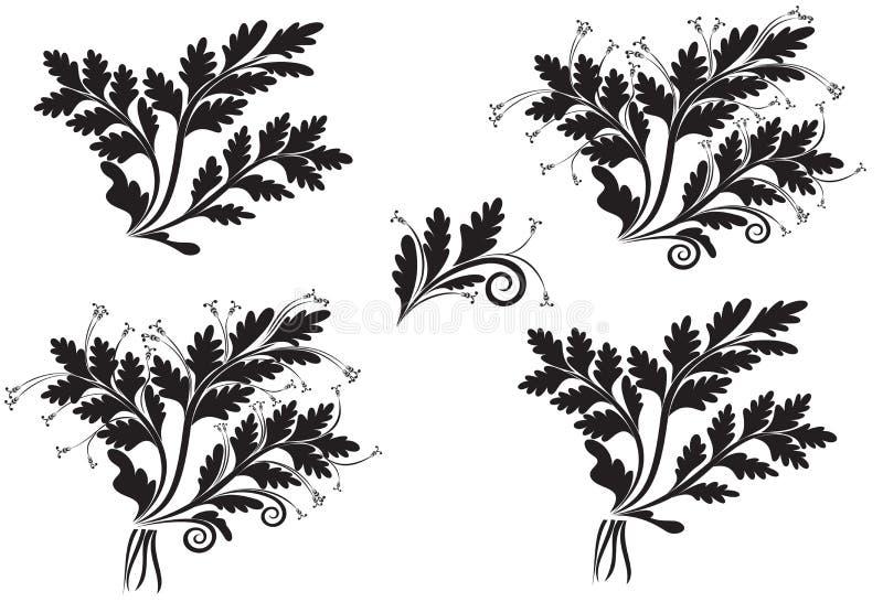 Ensemble d'épillets de fleur illustration stock