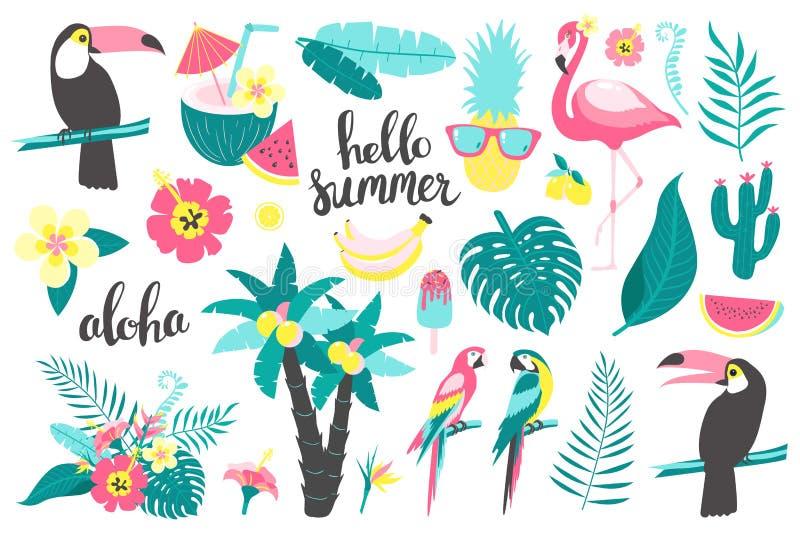 Ensemble d'été de feuilles tropicales d'éléments de conception, fleurs, fruits, flamants, toucan, perroquet illustration stock