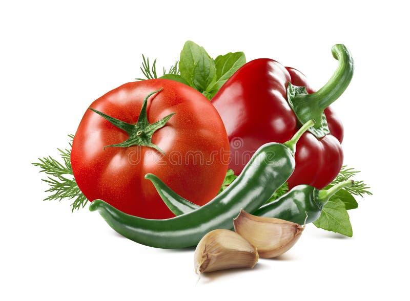Ensemble d'aneth de basilic d'ail de piment de poivre de tomate d'isolement photo stock