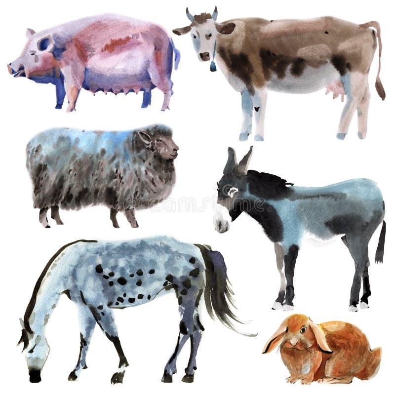 Ensemble d'animaux de ferme Illustration d'aquarelle à l'arrière-plan blanc illustration libre de droits