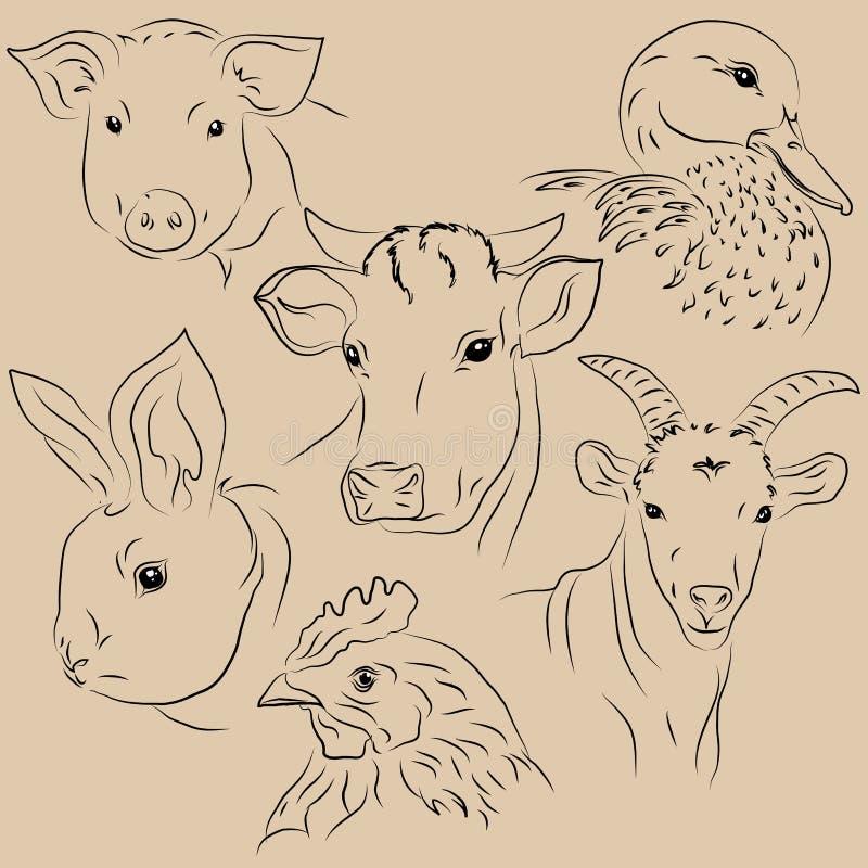 Ensemble d'animaux familiers d'illustrations Ferme illustration libre de droits