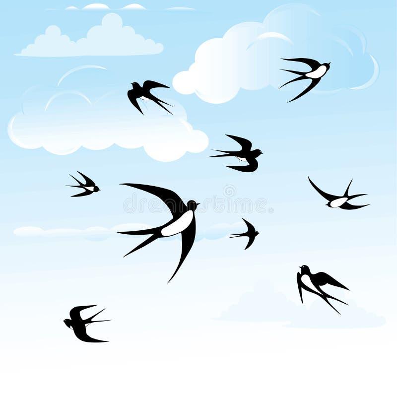 Ensemble d'hirondelle d'oiseau. illustration libre de droits