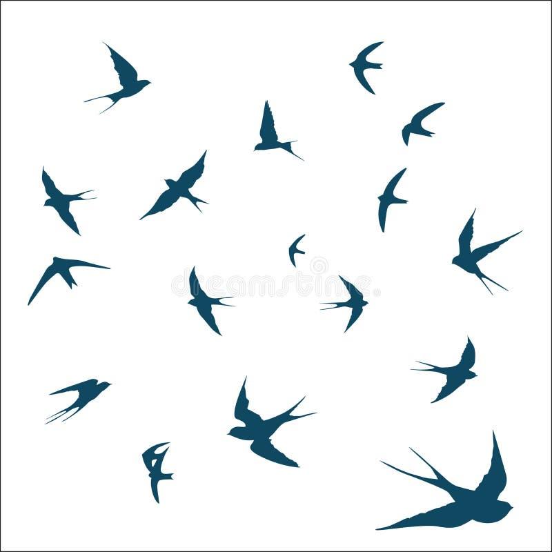 Ensemble d'hirondelle d'oiseau illustration de vecteur