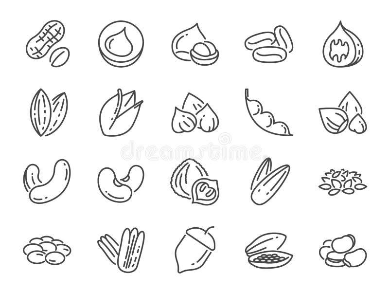 Ensemble d'icône d'écrous, de graines et de haricots Icônes incluses comme basilic, thym, gingembre, poivre, persil, menthe et pl illustration de vecteur