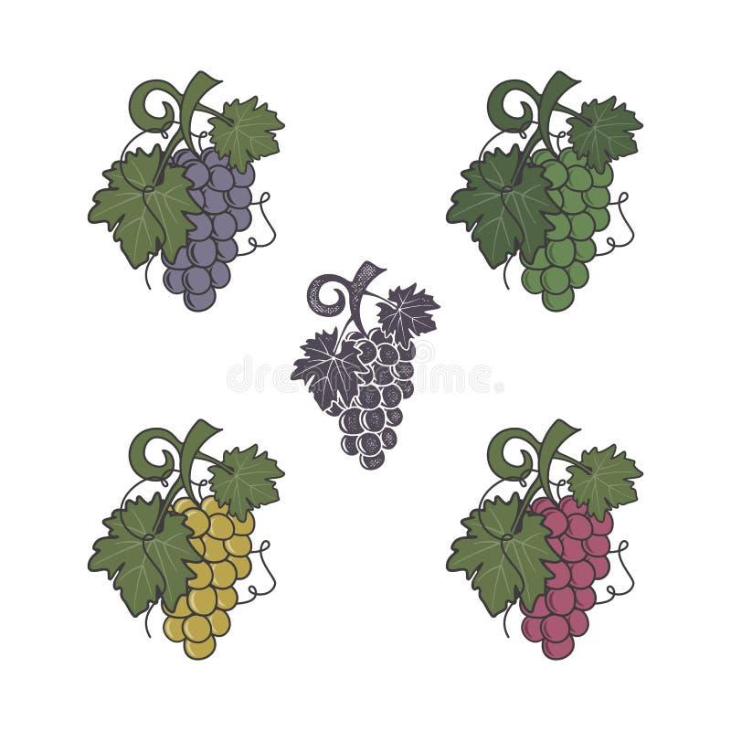 Ensemble d'icône de raisins Couleurs et style différents Effet plat et rétro d'impression typographique Symbole de Friut pour le  illustration de vecteur