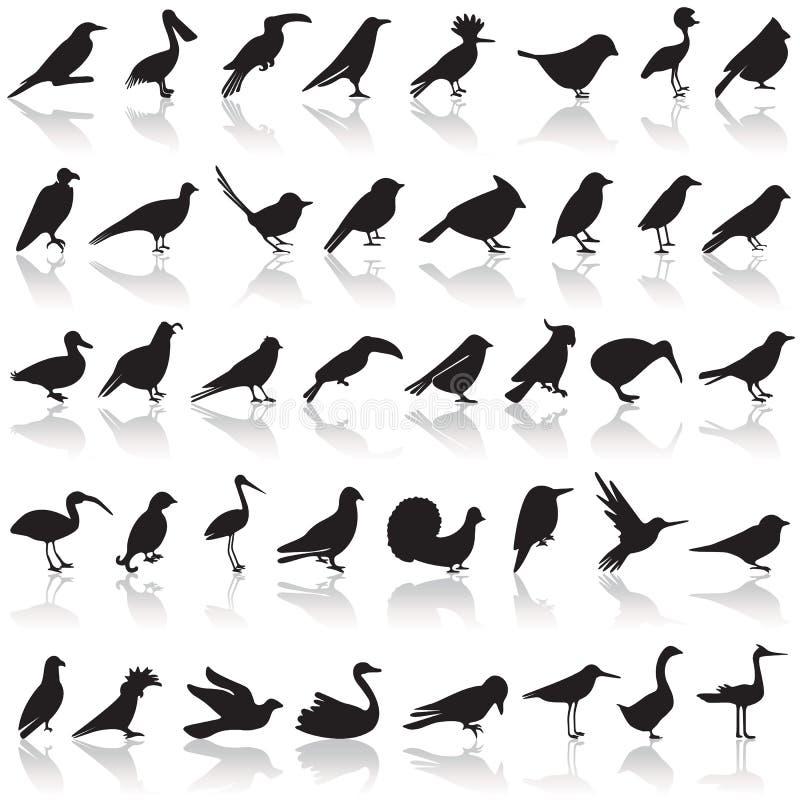 Ensemble d'icône d'oiseau illustration stock