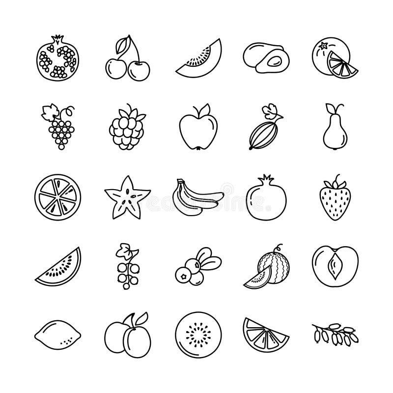 Ensemble d'icônes avec différents fruits illustration libre de droits