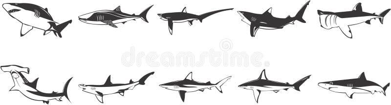 Ensemble d'image de requins illustration libre de droits