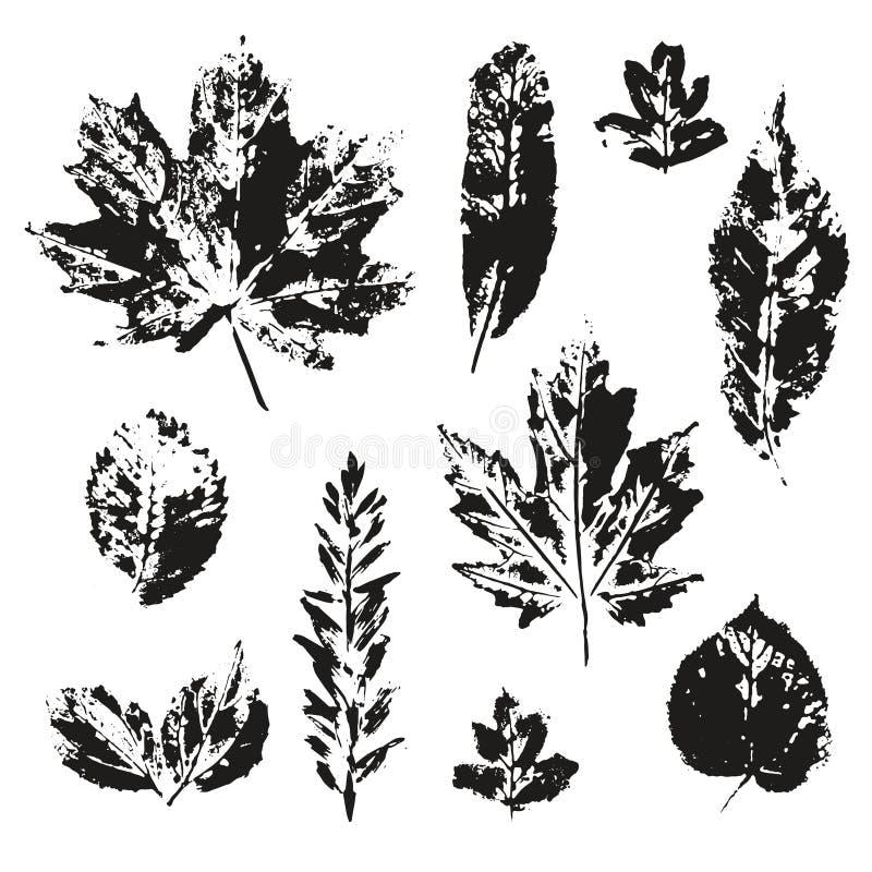 Ensemble d'impression de feuilles de vecteur d'isolement illustration libre de droits