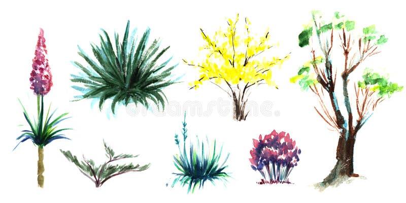 Ensemble d'?l?ments d?coratifs Plantes, fleurs et arbustes de floraison de jardin Volière sur une tige, étourneaux noirs d'oiseau illustration libre de droits