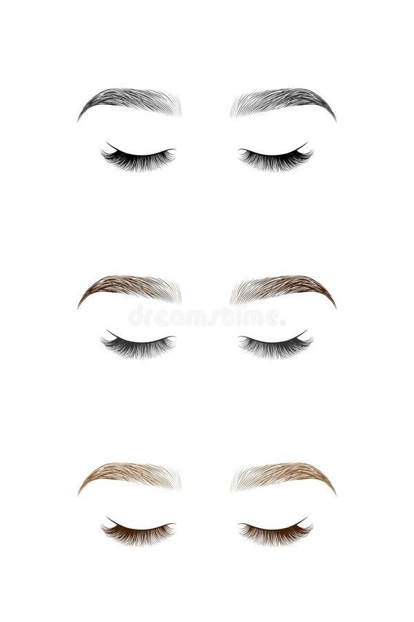 Ensemble d'oeil fermé avec de longs cils et sourcils illustration de vecteur
