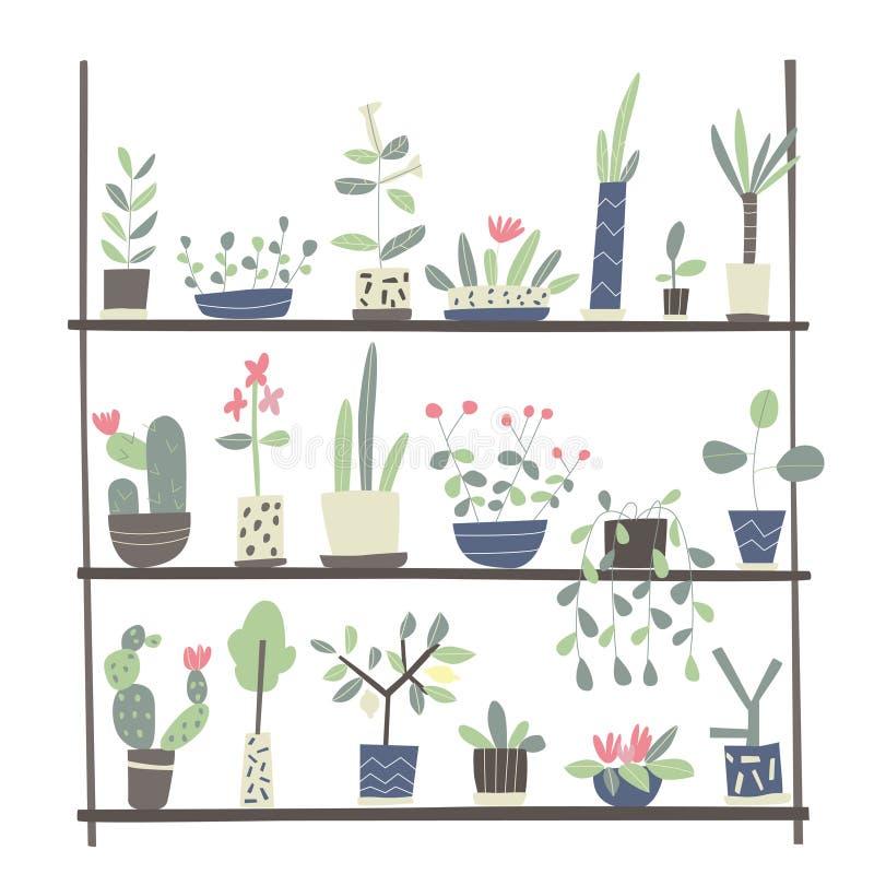 Ensemble d'usines d'intérieur dans des pots sur les étagères Illustration de vecteur sur le fond blanc illustration libre de droits