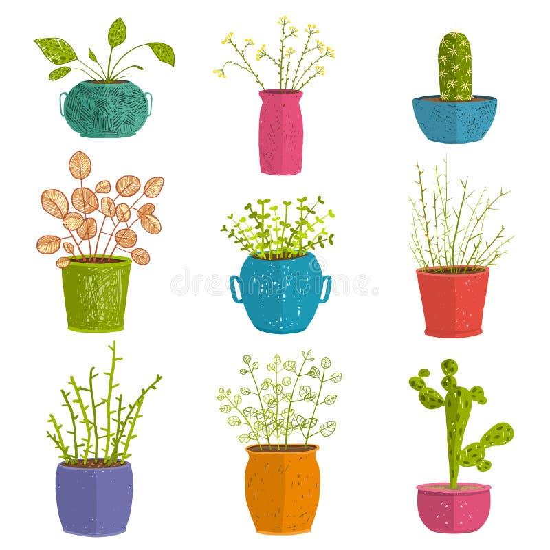 Ensemble d 39 usines d 39 int rieur vertes dans des pots for Jardinage d interieur