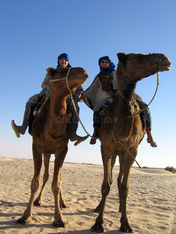 Ensemble dans le désert photos libres de droits