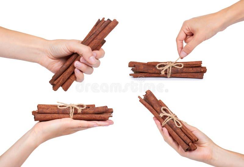 ensemble de bâtons de cannelle, d'assaisonnement naturel et d'aromatherapy D'isolement sur le fond blanc photo stock