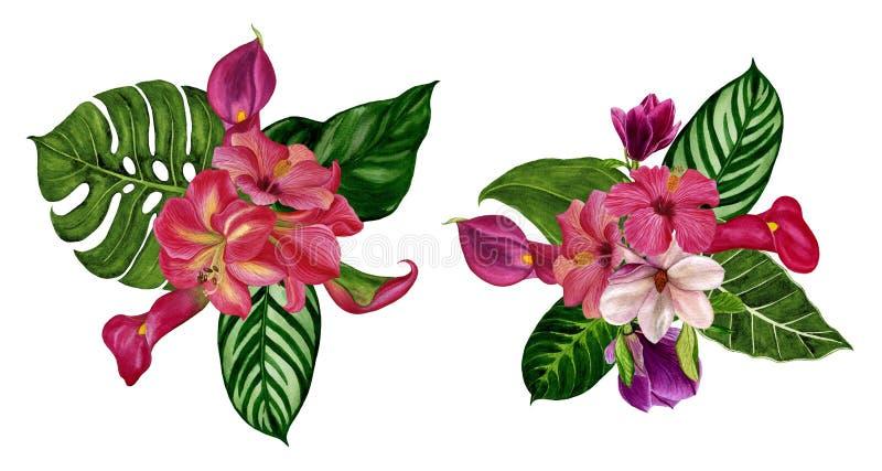 Ensemble de bouquets des fleurs Illustration d'aquarelle Éléments distincts sur un fond blanc photos libres de droits