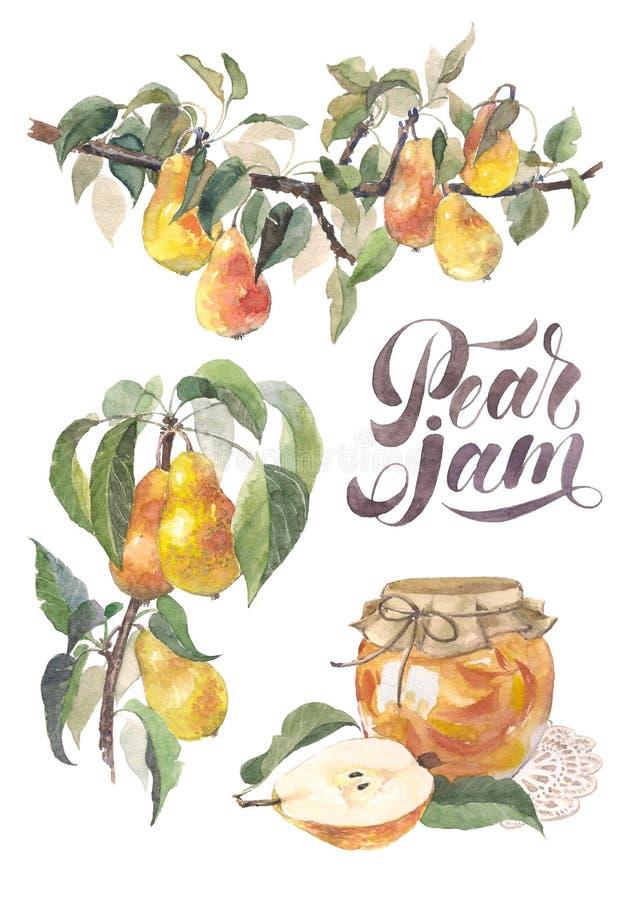 Ensemble de branche et de confiture de poire de fruit d'aquarelle Détails de l'usine de jardin, pot de confiture, marquant avec d illustration stock
