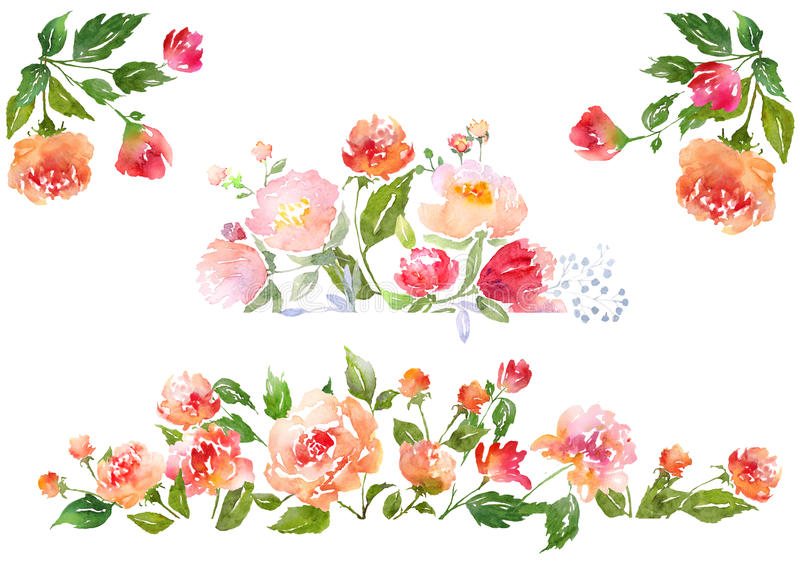 Ensemble de composition florale d'aquarelle illustration de vecteur