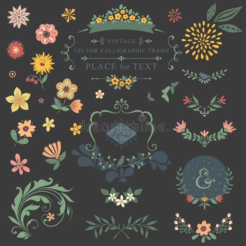Ensemble de conception florale illustration libre de droits