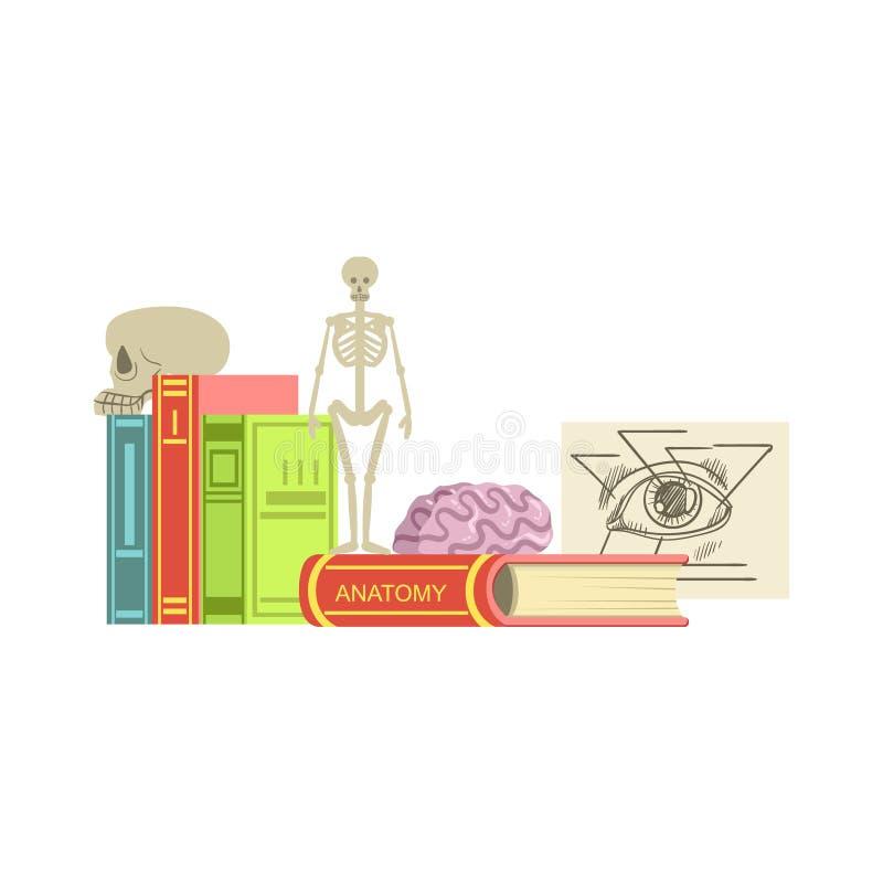 Ensemble de cours d'anatomie d'objets illustration stock