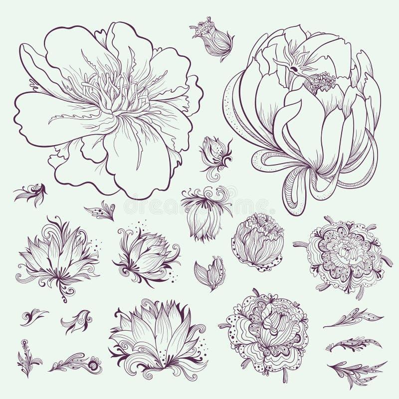 Ensemble de croquis de fleurs d'ensemble de vecteur illustration libre de droits