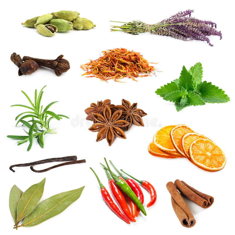 Ensemble de différentes épices et herbes images stock
