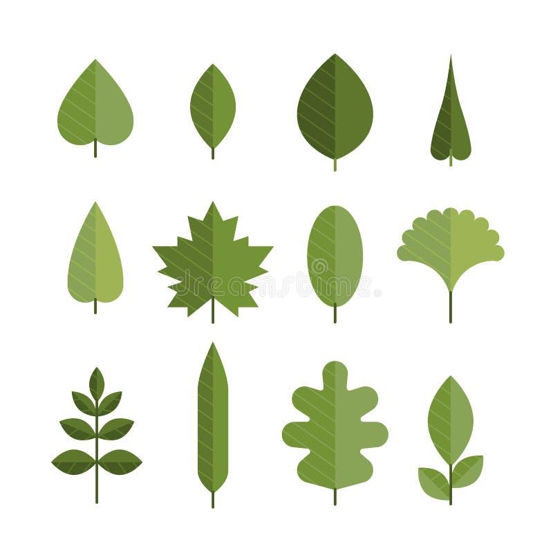 Ensemble de différentes feuilles plates de vert illustration de vecteur