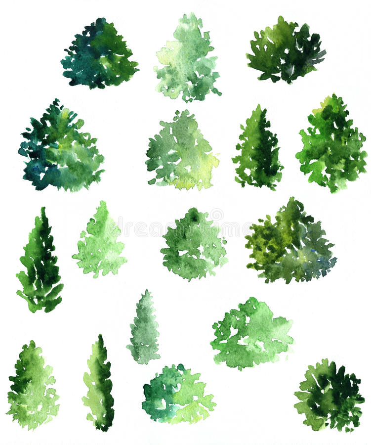 Ensemble de diff rents arbres feuilles caduques - Arbres a feuilles caduques ...