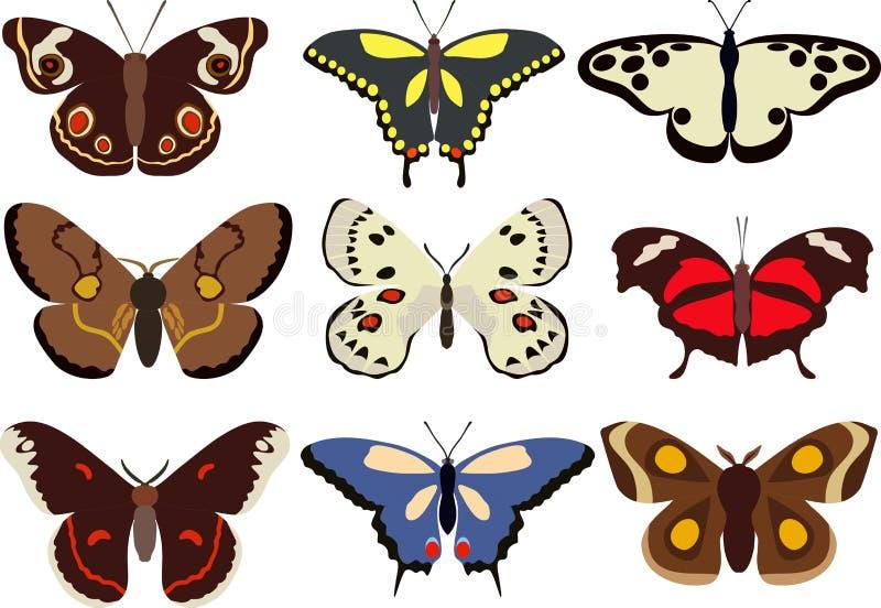 Ensemble de différents types de papillons colorés d'isolement sur le fond blanc dans le style plat Illustration de vecteur illustration libre de droits